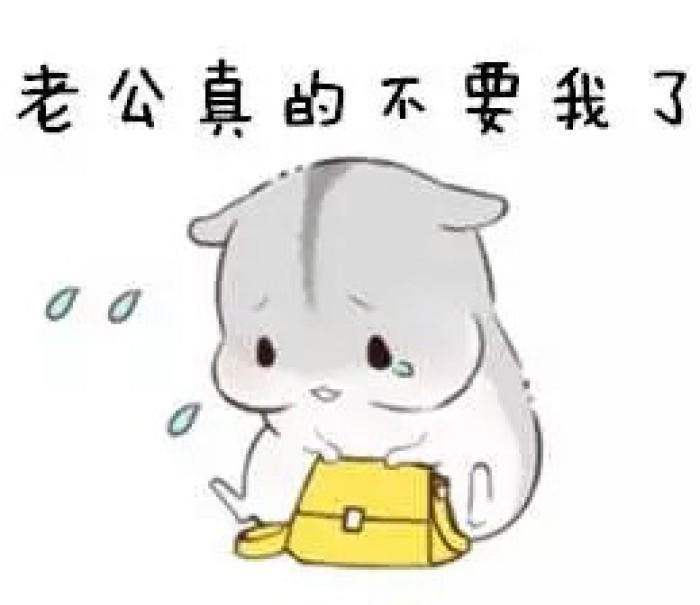 仓鼠萌萌的斗图表情包