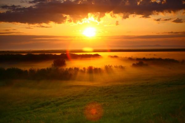 阳光明媚的清晨 唯美意境图片