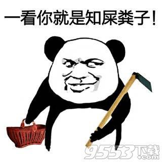 斗图表情包污熊猫(12张)_表情图片_表白图片网图片