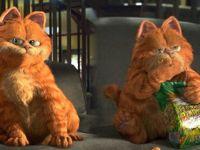 加菲猫表情图片大全