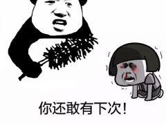 熊猫斗图表情包无字(8张)_表情图片_表白图片网图片