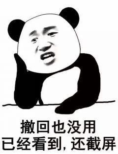熊猫表情包原图图片