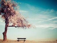孤独唯美伤感风景图片