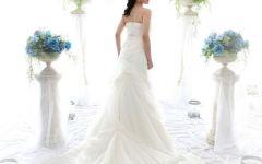 唯美婚纱图片新娘背影图片