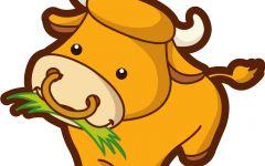 小牛可爱动漫图片图片