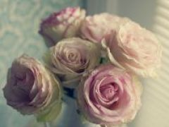 微信头像花
