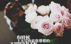 微信头像花朵唯美励志