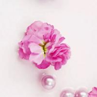 好看的微信花朵头像