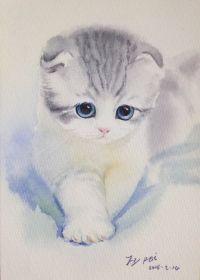 可爱小猫照片大全图片