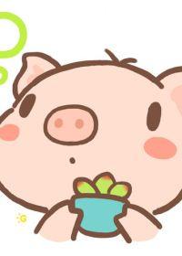 猪头头像卡通可爱静态