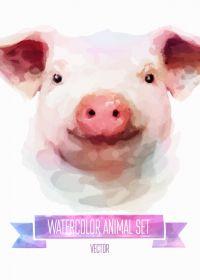猪头图片可爱