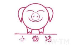 懒猪可爱照片