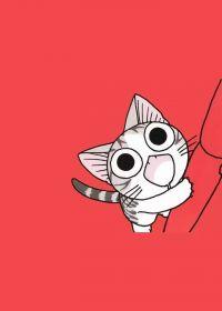 猫的照片可爱卡通