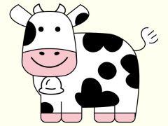动物照片可爱头像卡通
