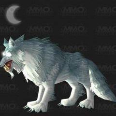 狼的图片霸气qq头像