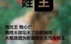 微信头像姓氏图片大全王