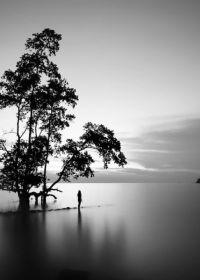 唯美黑白照片