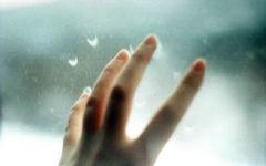 手指照片唯美图片