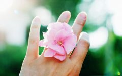 手指图片大全唯美