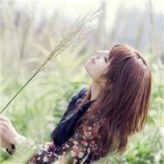 薰衣草的图片的qq头像
