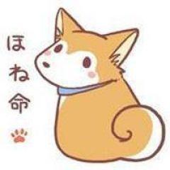 猫的qq头像漫画图片大全