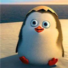 企鹅图片qq头像