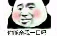 熊猫表情图ok