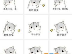 仓鼠表情包原图