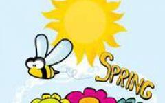 春天微信头像花朵图片