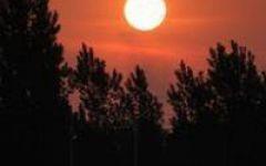 微信头像早晨太阳图片