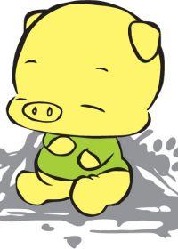 小猪照片可爱图片