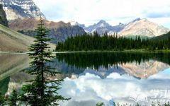 唯美绿色意境图片风景