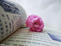 唯美花朵书本意境图片