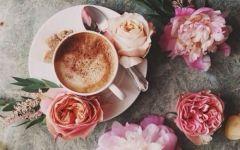 咖啡鲜花唯美图片大全