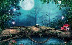 动漫森林唯美意境图片