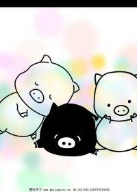 猪的图片可爱