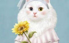 萌猫图片大全可爱头像