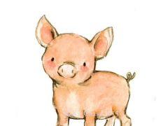 小猪可爱图片大全可爱