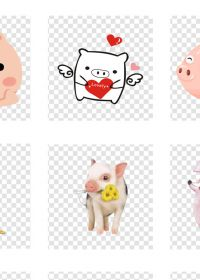 卡通可爱猪猪萌宠图片