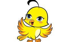 可爱小鸟图片