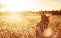 阳光唯美图片温暖