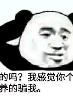 熊猫斗图表情包无字