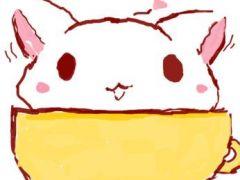 萌小猫图片卡通qq头像图片