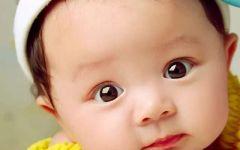 婴儿照片可爱图片大全