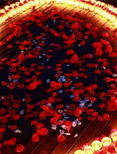 海边求婚最浪漫图片大全