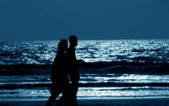 夜晚的沙滩浪漫图片
