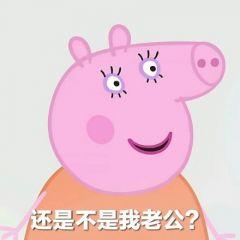 小猪佩奇微信情侣头像