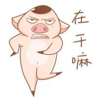 搞怪情侣头像一人一猪