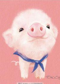 萌小猪的图片大全可爱图片