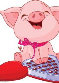 漂亮小猪图片大全可爱图片